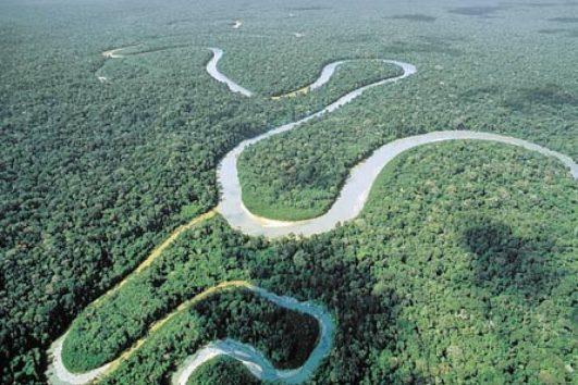 Tour amazonia Peru